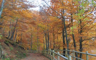 Ruta 11-2021: Torrestío, Navariegas, Cascada del Xiblu